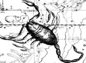 гороскоп скорпион и кто родился под этим знаком